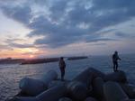 テトラ帯の夜明けです