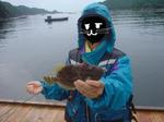 カワハギ、釣れました